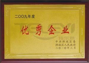 在2009年企业中得到认可