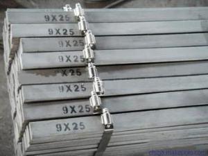宏世潤通商貿有限公司供應鍍鋅扁鋼