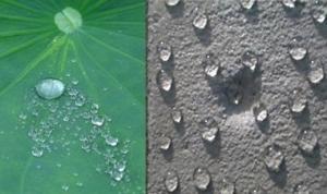 外墻防水劑 透明防水膠 防水性強 抗滲  北京德昌偉業建筑工程技術有限公司