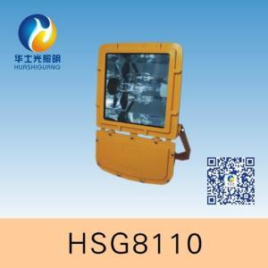 HSG8110防爆泛光灯