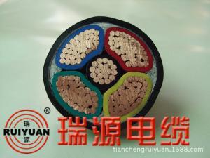 高压电缆电力电缆天成瑞源交联聚乙烯绝缘聚氯乙烯护套电力电缆