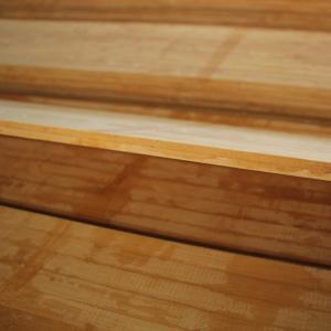 新的竹胶模板欢迎广大顾客采购