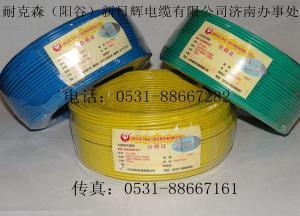 耐克森日辉阻燃电线电缆聚氯乙烯绝缘家装电线BV2.5