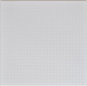 硅钙板(仿铝天花)