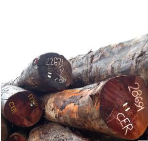 全网热销 雕刻防虫底座木板 原生态 木质型材 红椿木 原木材料