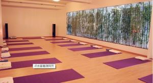 博高瑜伽教室吸音塑胶地板,舞蹈房防滑pvc地板