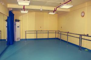 博高儿童舞蹈教室地胶,江苏舞蹈教室防滑塑胶地板