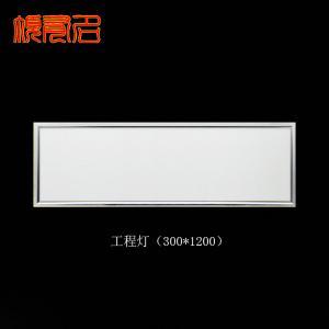 LED平板灯 LED工程灯 300x1200 集成吊顶LED面板灯 多尺寸定制