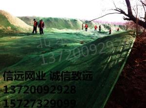 防尘网批发 盖土网布 绿化网 绿化防尘网 绿化盖土网布批发