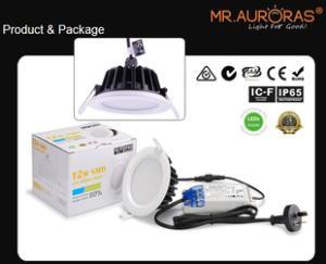 300mA 12W防水筒灯 白色圆形开孔95mm IP65防水天花筒灯 CE 认证