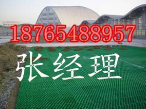 上海植草格厂家18765488957