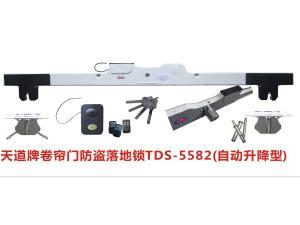卷帘防盗落地锁TDS-5582(自动上升型)