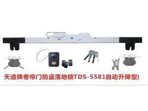 卷帘防盗落地锁TDS-5581(自动上升型)