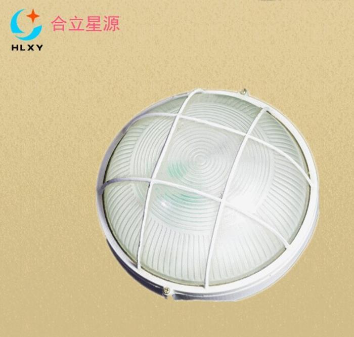 6wLED防水灯照明灯
