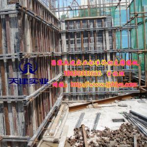 【新型】轻钢主龙骨剪力墙模板支撑-组合钢结构立体模板-天建供应