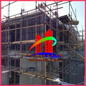 广东新型框架式多功能剪力墙模板支撑天建实业直销