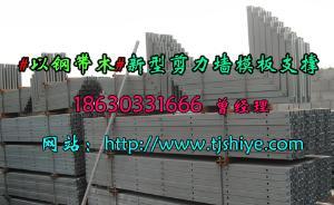 新型剪力墙模板支撑建筑工业化标准化产业化施工材料