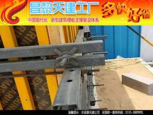 供应昌黎天建厂家多种型号镀锌扣件