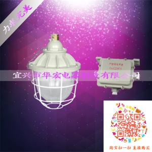 BAD51防爆金屬鹵化物燈  廠用防爆金鹵燈 BAD51價格