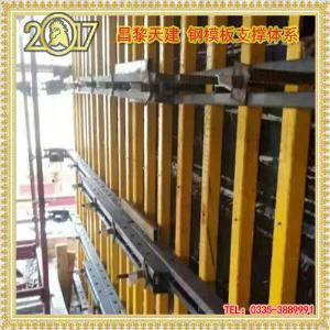 昌黎天建新型建筑模板支撑体系架专业厂家