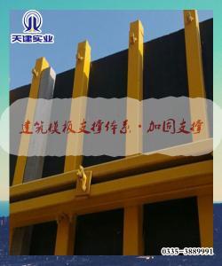 滨州-新型施工钢模板支撑体系天建厂家价格实惠