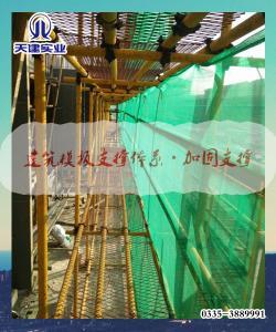 廊坊-工程建设推荐新型建筑模板支撑体系