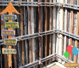 和县-新型定制模板支撑多功能建筑模板支撑
