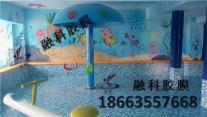 泳池、水上乐园、温泉防水胶膜现货