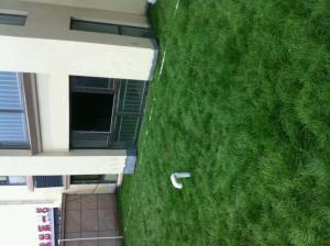 出口种植岩棉屋顶绿化岩棉有效降低噪音