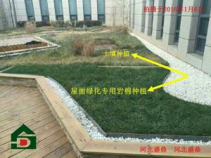 出口种植岩棉屋顶绿化岩棉可解决城市环保