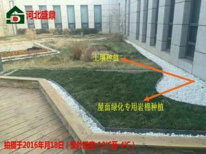 出口种植岩棉屋顶绿化岩棉降低建筑消耗节约能源