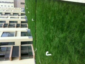 供应种植专用岩棉板绿化岩棉板