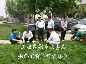 供应轻型绿化种植专用岩棉板绿化岩棉板在城市中的荷载问题