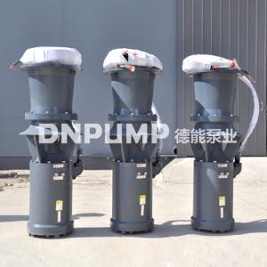 简易型轴流泵_大排量_环保绿化灌溉用泵
