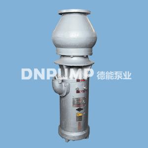 简易型轴流泵_大流量_卧式安装