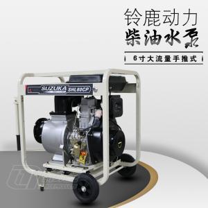 小体积大流量6寸柴油机排污泵